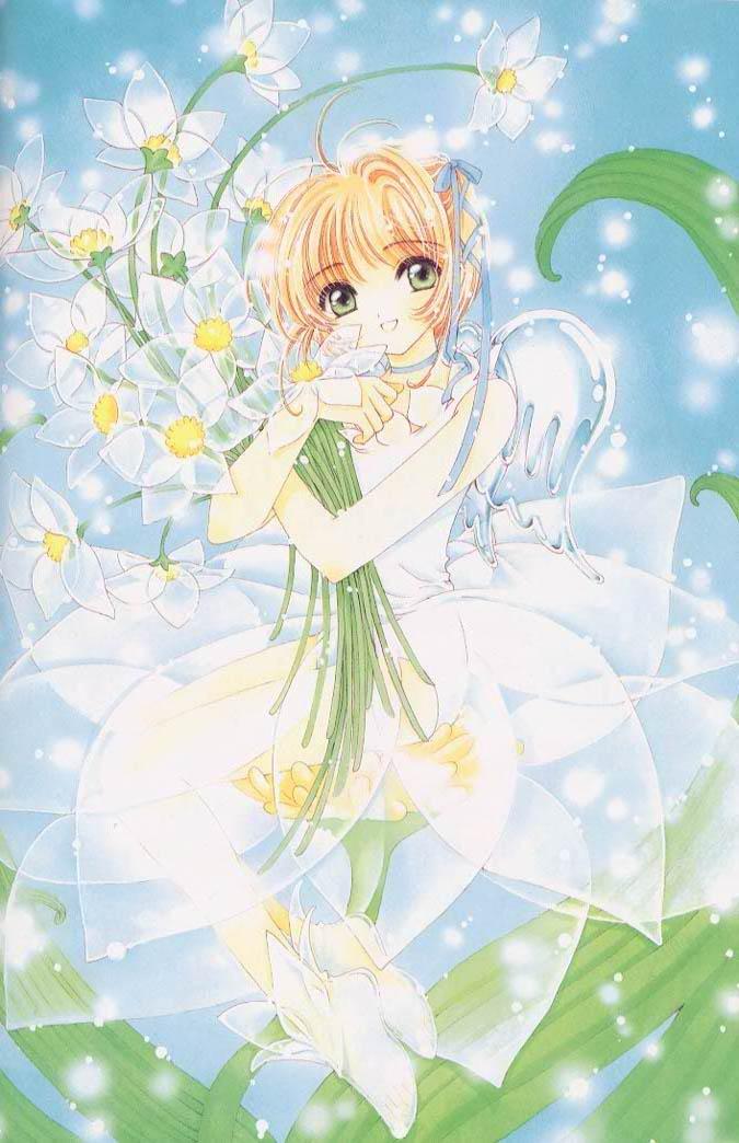 flowersakura.jpg